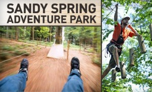 The Adventure Park At Sandy Spring Friends School